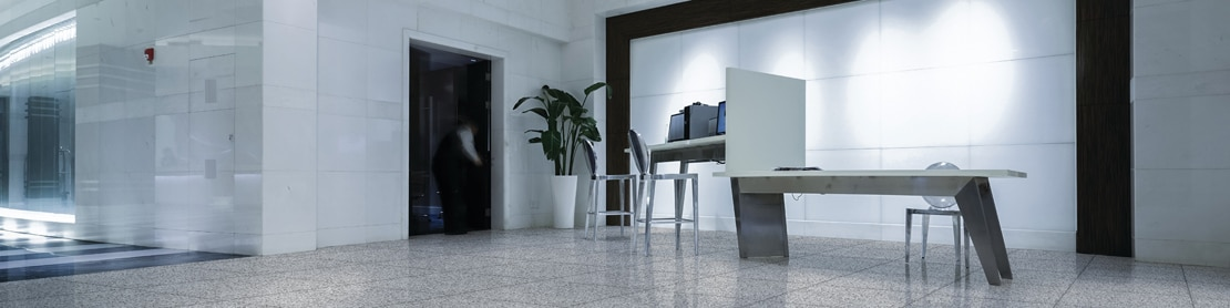 Ultra-modern office building foyer with large format, white & gray terrazzo look floor tile, white stone wall tile with spotlights and black framing, and 5-foot bird of paradise plant.