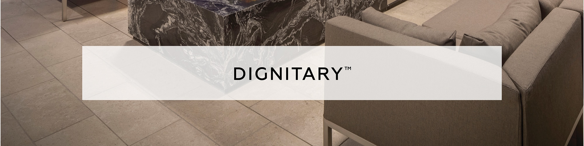 DAL_Aug2020_Dignitary_41_banner
