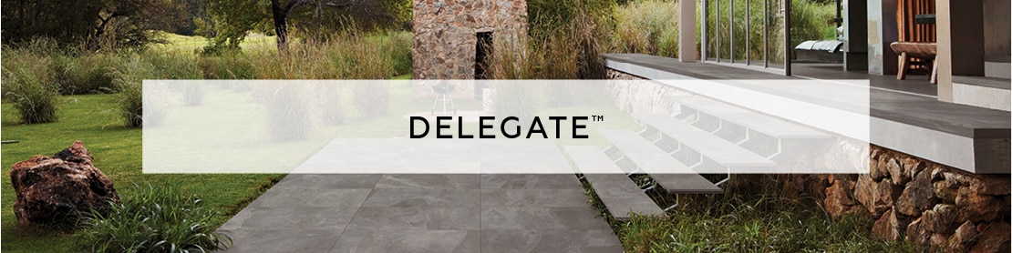 DAL_July2020_Delegate_41_banner