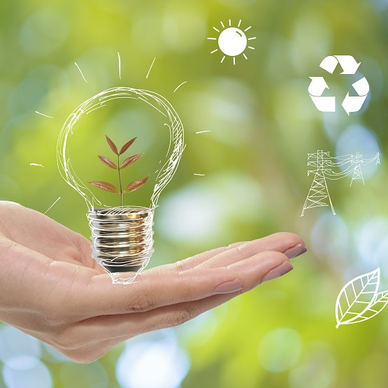 lightbulb_sustainability_greenmanufacturing