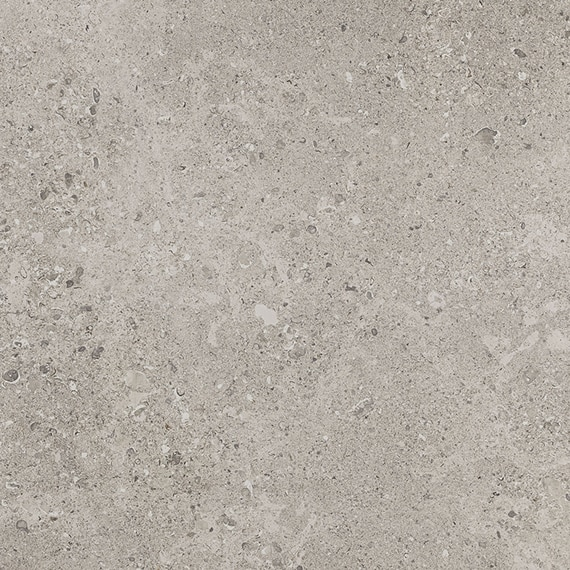 DAL_DR08_24x24_SuperiorTaupe_Unpol_swatch