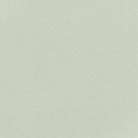 DAL_RS34_6x6_Hex_SucculentGreen_swatch