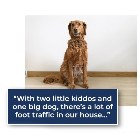 "A golden retriver with a text caption stating ""With two little kiddos and one big dog, there's a lot of foot traffic in our house . . ."""
